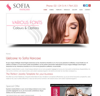 Joomla hair salon hairdresser template hair stylist joomla template best responsive